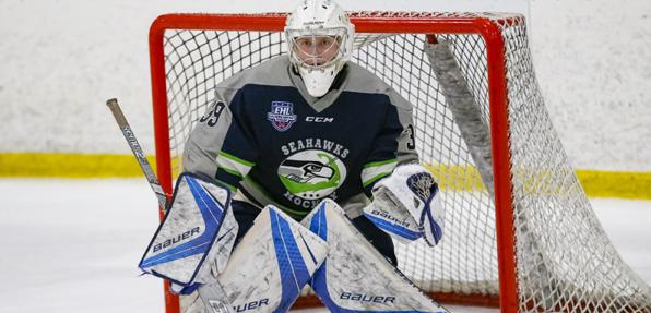 Goalie Guidance From a Pro